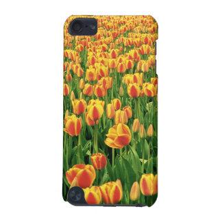 Fleur de tulipes de ressort devant la vieille gran coque iPod touch 5G