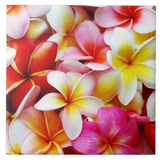 Fleur d'Hawaï de Frangipani de Plumeria customisée Grand Carreau Carré