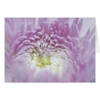 Fleur en pastel molle de lavande carte de vœux