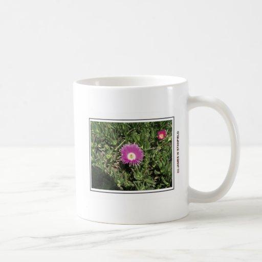 Fleur et abeille tasses à café