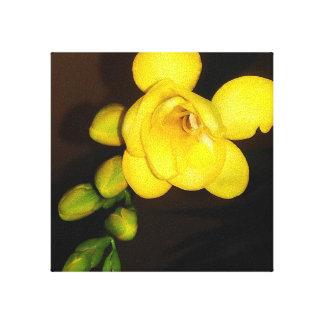 Fleur et bourgeon jaunes de freesia toile