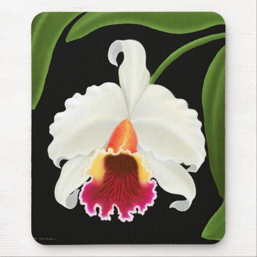 Fleur exotique d'orchidée de Cattleya Tapis De Souris