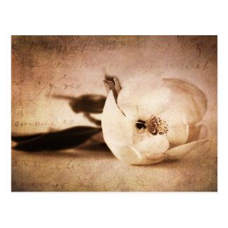 Fleur florale de sépia de fleur vintage de carte postale