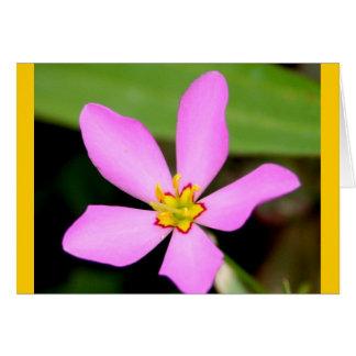 Fleur géniale rose carte de vœux