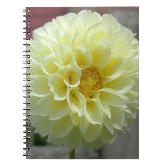 Fleur jaune d'angle de dahlia carnet