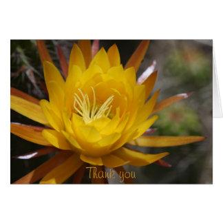 Fleur jaune de cactus carte de vœux