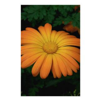 Fleur jaune-orange de marguerite papier à lettre