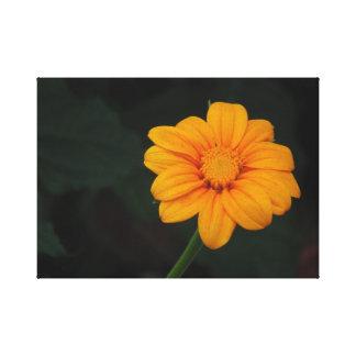 Fleur jaune/orange toile