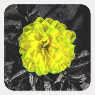 Fleur jaune sticker carré