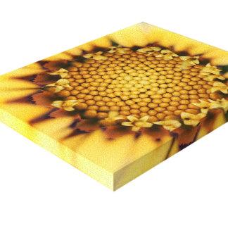 Fleur macro de couleur jaune toiles