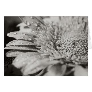 Fleur noire et blanche et carte de note de