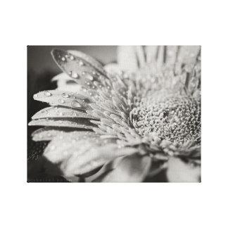 Fleur noire et blanche et copie de toile de