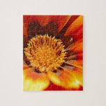 Fleur orange de Zinnia Puzzle Avec Photo