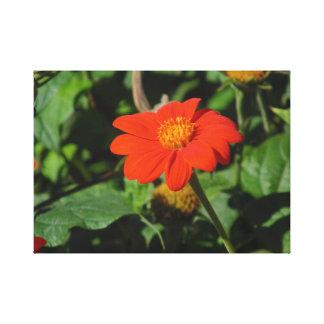 Fleur orange/rouge toile