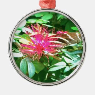 Fleur pointue rose à Key West Ornement Rond Argenté