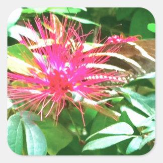 Fleur pointue rose à Key West Sticker Carré