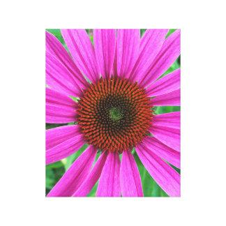 Fleur pourpre toile