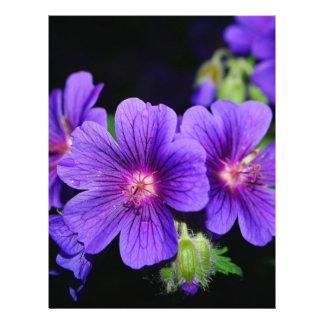 Fleur Prospectus Avec Motif
