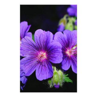 Fleur Prospectus Customisé