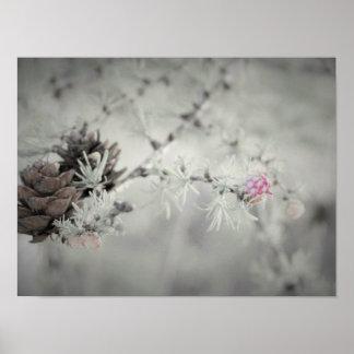 Fleur rose au mélèze noir et blanc poster