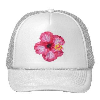 fleur rose blanche rouge de ketmie aloha casquettes de camionneur