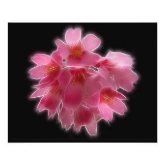 Fleur rose d'arbre de fleurs de cerisier prospectus en couleur