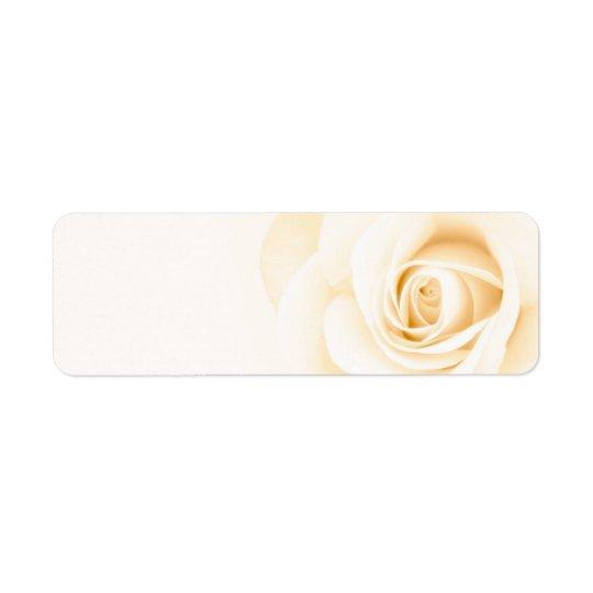 Fleur rose de bel ivoire crème mol florale étiquettes d'adresse retour