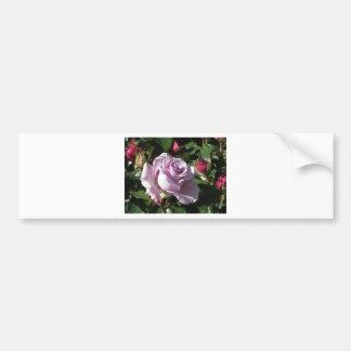 Fleur rose de violette simple avec les roses autocollant pour voiture