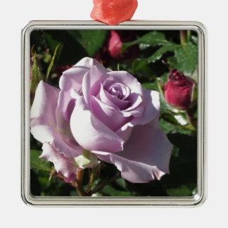 Fleur rose de violette simple avec les roses ornement carré argenté