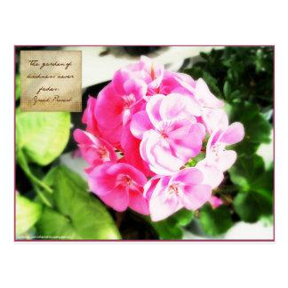 Fleur rose et proverbe de gentillesse carte postale
