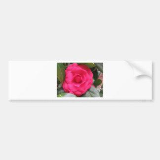 Fleur rouge de cognassier du Japon Rachele Odero Autocollant Pour Voiture