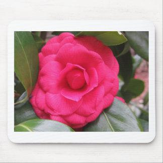 Fleur rouge de cognassier du Japon Rachele Odero Tapis De Souris