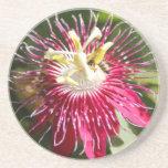 Fleur rouge de passion avec l'abeille dessous de verres