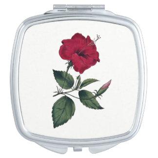 Fleur rouge-foncé de ketmie de style botanique miroir de poche