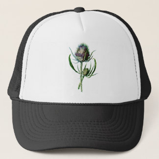 Fleur sauvage d'antiquité de chardon d'écossais du casquette