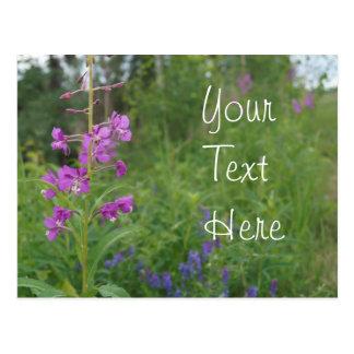 Fleur sauvage de Fireweed de l'Alaska Carte Postale