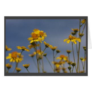 Fleur sauvage jaune de désert carte de vœux