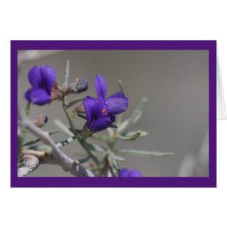 Fleur sauvage pourpre de désert cartes