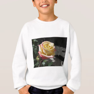 Fleur simple de rose jaune au printemps sweatshirt