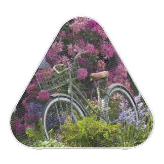 Fleur spectaculaire de ressort, antiquité haut-parleur bluetooth