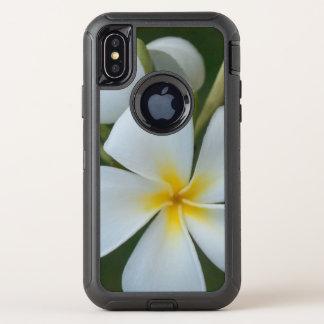Fleur tropicale blanche de plumeria des Fidji
