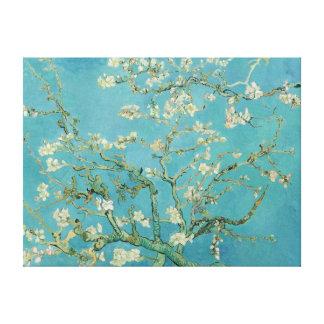 Fleur Van Gogh d'amande Toiles