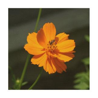 Fleurissez avec la petite abeille, copie en bois canevas en bois