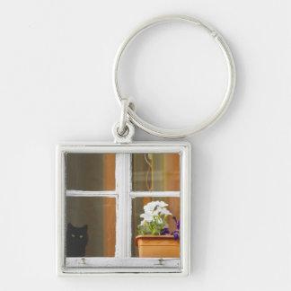 Fleurissez par la fenêtre, Sighisoara, Roumanie Porte-clés