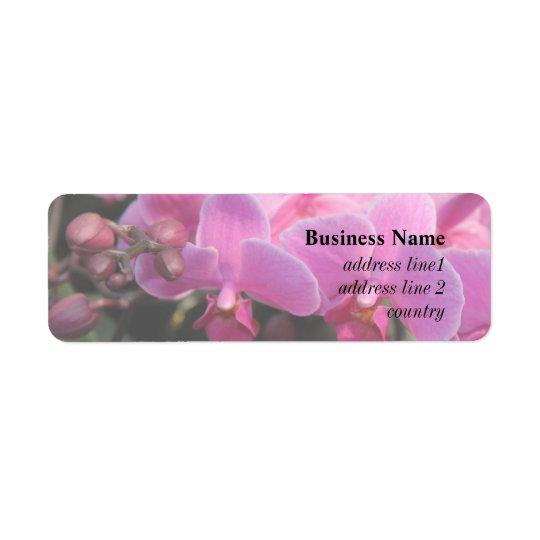 fleurs assez roses d'orchidée étiquette d'adresse retour
