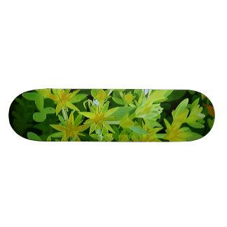 Fleurs avec l'araignée plateau de skateboard