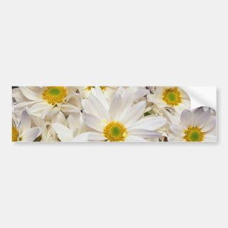 fleurs blanches de chrysanthèmes de marguerite autocollant de voiture