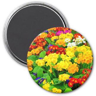 Fleurs blanches rouges, jaunes, pourpres colorées magnet rond 7,50 cm