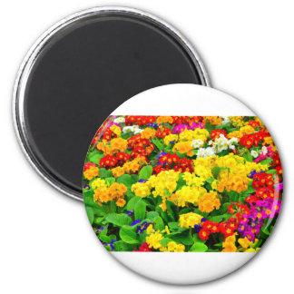 Fleurs blanches rouges, jaunes, pourpres colorées magnet rond 8 cm