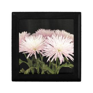 Fleurs blanches violettes de chrysanthème sur le boîte à souvenirs